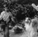 Lassie 'The Bear' episode shots 007